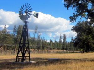 Wood windmill stand